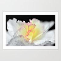 Pink Bloom Art Print