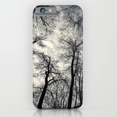 Sky-reaching Trees Slim Case iPhone 6s
