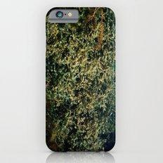 pond garden Slim Case iPhone 6s