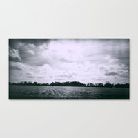 Black Sugar Canvas Print
