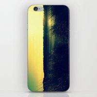 Grass Lands iPhone & iPod Skin
