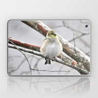 Winter Bird  Laptop & iPad Skin
