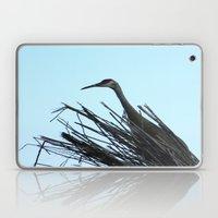 Crane Hiding Laptop & iPad Skin