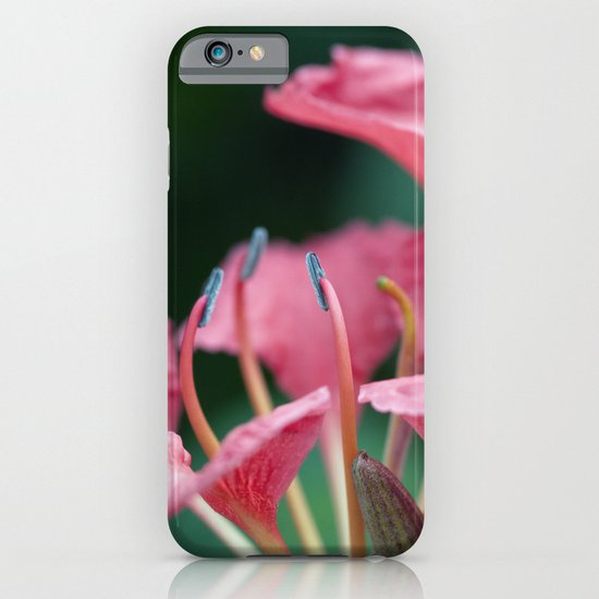 Softly Blow Petals Pink iPhone & iPod Case