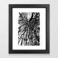 broken boughs Framed Art Print