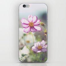 Sunkissed. iPhone & iPod Skin