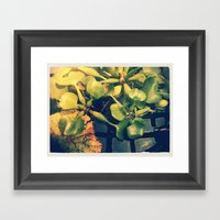 Green House I  Framed Art Print