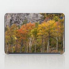 autumn trees iPad Case