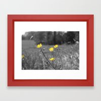 Summers Beauty Framed Art Print