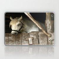 Horse Barn Laptop & iPad Skin