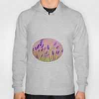 Lavenders  Hoody