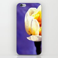 only nature is perfect iPhone & iPod Skin