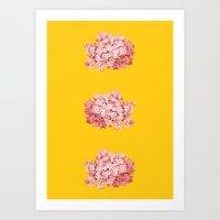 tridrangea Art Print