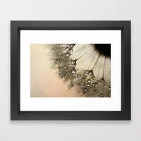 Peach & Dandy Framed Art Print
