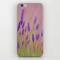 Lavenders  iPhone & iPod Skin