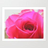 Pink Roses #2 Art Print