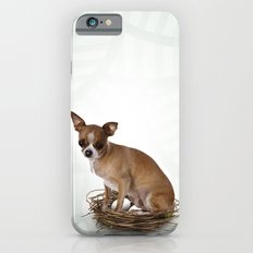 A little confused iPhone 6 Slim Case