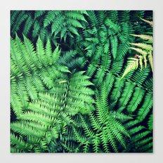 50 Shades of Green (1) Canvas Print