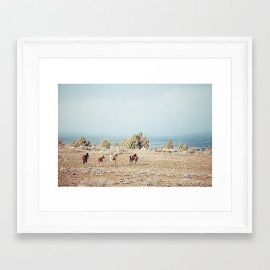 Oregon Wilderness Horses Framed Art Print