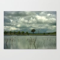 Wet Season Canvas Print