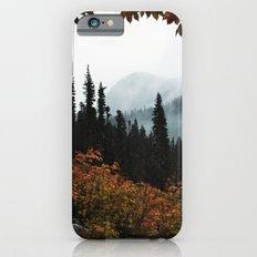 Fall Framed Trail iPhone 6 Slim Case