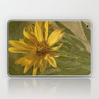 Desert Flower Laptop & iPad Skin