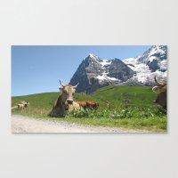 Swiss Cow #2 Canvas Print
