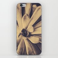 Succulent Leaves iPhone & iPod Skin