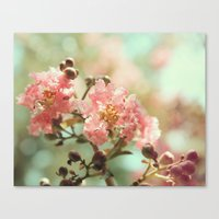 Soft and Sweet! Canvas Print