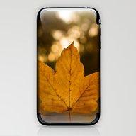 One Leaf - Autumn iPhone & iPod Skin