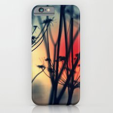 Shapes - dry weeds at sunrise Slim Case iPhone 6s