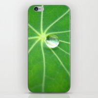 water pearl iPhone & iPod Skin