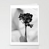 Vegetal Portrait II: Bla… Stationery Cards