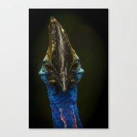 The Cassowary Canvas Print