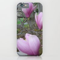 Magnolia iPhone 6 Slim Case