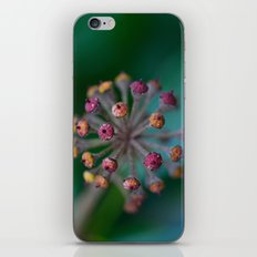 The Beauty and the Beast iPhone & iPod Skin