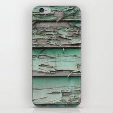 erode iPhone & iPod Skin