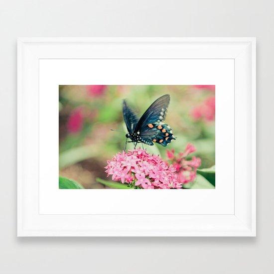 Spring Butterfly Framed Art Print