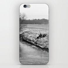 frozen fish... iPhone & iPod Skin