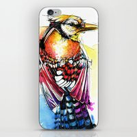 Crazy Jay iPhone & iPod Skin