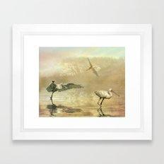 Spoonbill morning Framed Art Print