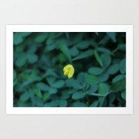 Yellow On Green Art Print