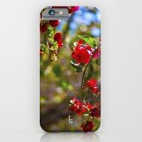 Bougainvillea II iPhone 6 Slim Case