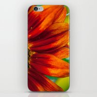 Red Sunflower iPhone & iPod Skin
