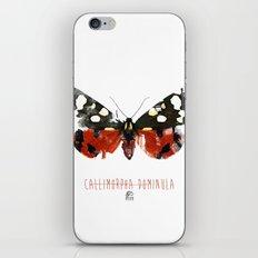 Butter flies - Callimorpha_Dominula iPhone & iPod Skin