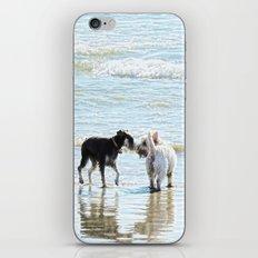 Sweet Meet iPhone & iPod Skin
