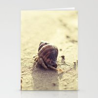 Little Hermit Stationery Cards
