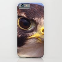 iPhone & iPod Case featuring Lanner Falcon by Serenity Photography