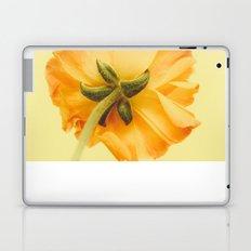arriere Laptop & iPad Skin