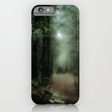 In the forest of Washington state, ponderosa pine trees   iPhone 6 Slim Case